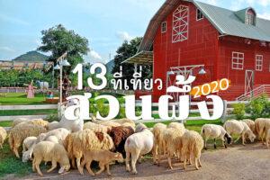 ที่เที่ยวสวนผึ้ง 2021 จ.ราชบุรี ถ่ายรูป เช็คอิน ชิมกาแฟ ชมฟาร์ม