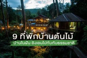 9 ที่พักแนะนำ ''บ้านต้นไม้'' บ้านในฝัน ที่เราสามารถอิงเอนไปกับธรรมชาติและป่าไม้ !!