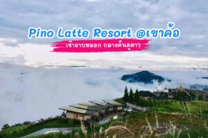 Pino Latte Resort เขาค้อ ''เช้าอาบหมอก กลางคืนดูดาว''