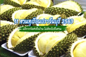 11 สวนทุเรียนปราจีนบุรี 2564 หวานมัน อร่อย มีบริการจัดส่งถึงบ้าน ไม่ต้องไปถึงสวน