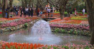 ชวนเที่ยว มหกรรมไม้ดอกอาเซียน เชียงราย 2019